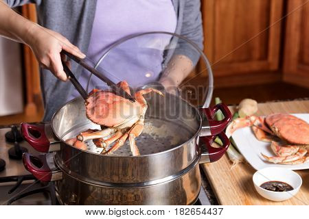 Female hands removing large cooked crab from hot steaming pot. Selective focus on front of crab