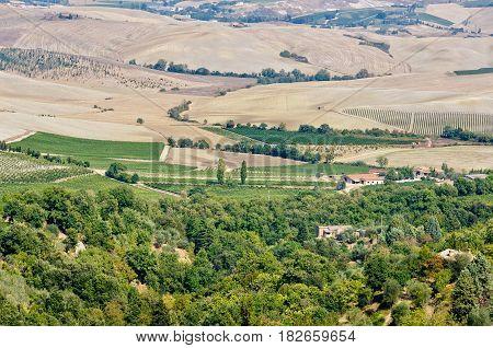 Round clay hillocks after the autumn tilling - Crete Senesi, Italy