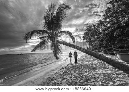 Mui Ne, Vietnam - February 19th, 2017: Couples lovers walk to the end of tropical beach with coconut palms as sun shines down to create a romantic setting for a weekend at  beautiful beach paradise