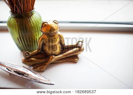 frog in a yoga pose on a white background