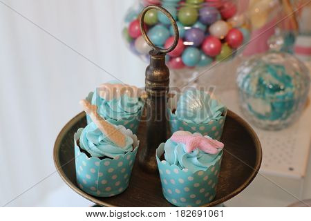 colorfull lovely cupcakes wrapped in elegant turquoise colored covering paper