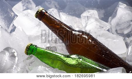cold bottle of beer on the background of ice