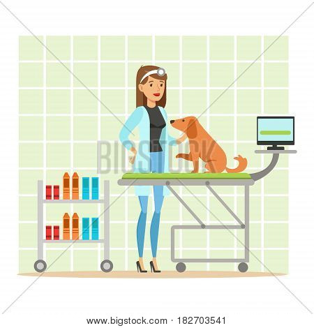 Cheerful veterinary doctor examining dog in vet clinic. Colorful cartoon character Illustration isolated on a white background