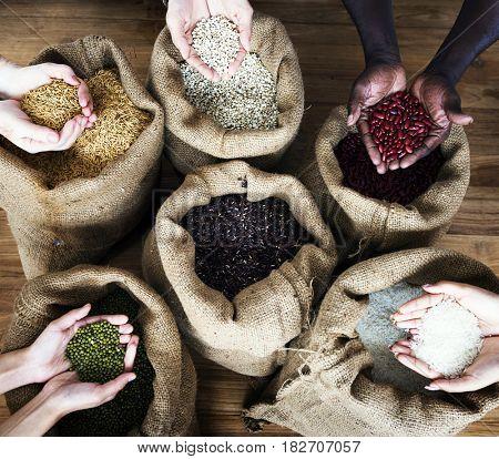 Group of handful of crops seeds in aerial view