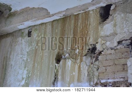 Leak fungal mold old wall heavy damage roof