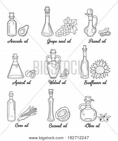 9 isolated doodle cooking oils. Sketchy hand drawn set of edible vegetable food oil. With origin products olive, apricot, corn, grape seed, walnut, coconut, avocado, peanut and sunflower.