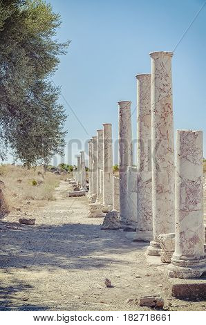 Ancient columnated street ruins from the Turkish town of Side. Focus on the foreground pillars.