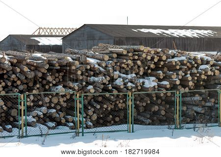 Woodworking industry logs ready for processing lie behind a fence