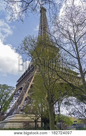 A view of the Eiffel Tower through the blossoming spring foliage. The beginning of April Paris France.