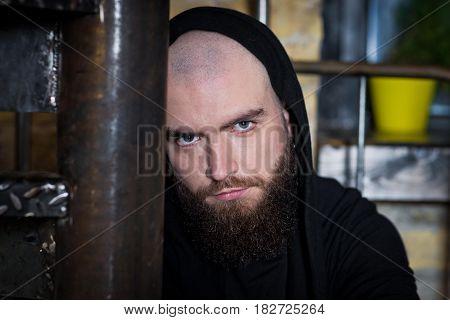 Portrait of a bearded guy. Bearded Bald Man