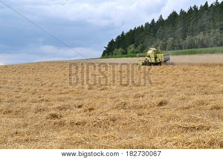 Small combine harvester on large grain field during harvest
