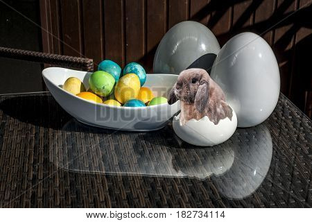 Set of colorful shiny Easter eggs and grey and white colored ceramic with bunny