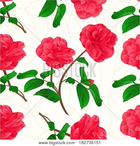 Seamless texture flowers Camellia Japonica stem with bud cracks in the porcelain vintage vector illustration