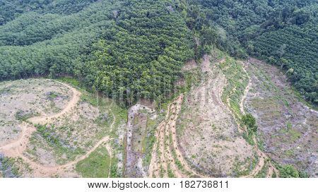 Deforestation, logging,environmental destruction. Aerial view from drone
