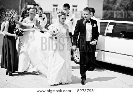 Stylish Wedding Couple With Bridesmaids And Best Mans Against Wedding Limousine.