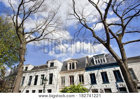 Street with historical mansions in residential district Kralingen in Rotterdam in the Netherlands
