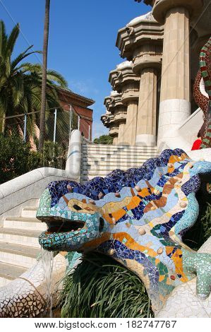 Barcelona Salamander