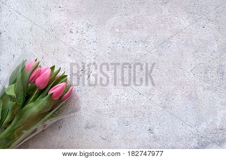 Pink tulips on shabby chique background with space for text