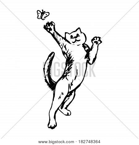 Cat catches butterfly - graphic image vector illustration