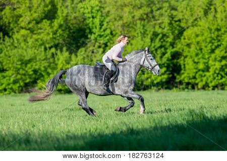 Horseback riding. Woman riding a horse in summertime outdoors. Human on horse runs fast in field. Horse rider.