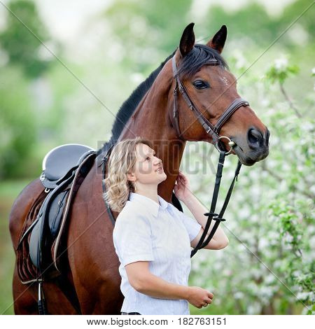 Woman and bay horse in apple garden. Portrait of horse and beautiful lady. Horse rider. Equestrian sport.