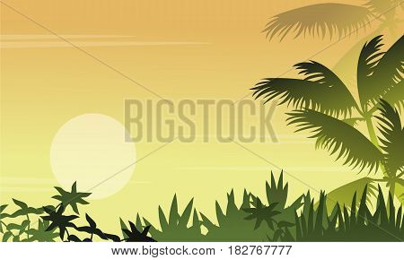 Silhouette of jungle with grass scenery vector illustration