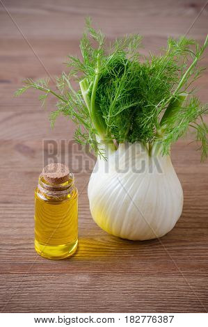 fresh fennel bulb and oil on wooden background vertical selective focus