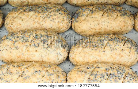 Closeup Of Proofing Whole Grain Rolls On Baking Paper With Poppy Seeds