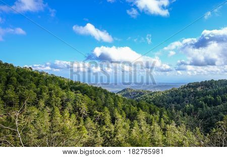 Troodos mountain top view in springtime with beautiful sky.