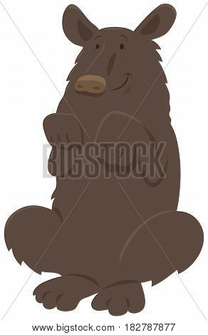 Black Bear Animal Character