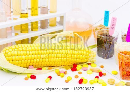 Ecologically clean products. Gmo seeds located in the glass cups glass tubes with colorful liquid corn and tabletes isolated on white background