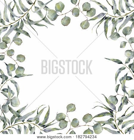 Watercolor border with eucalyptus branch. Hand painted floral frame with round leaves of silver dollar eucalyptus isolated on white background. For design or print.