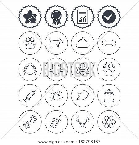 Report, check tick and award signs. Pets and Insects icons. Dog paw. Cat paw with clutches. Bone, feces excrement and vaccination. Honey, bee and honey comb. Best quality star symbol. Flat buttons