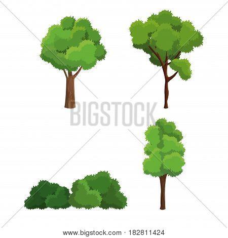 tree nature diversity plant vector illustration eps 10