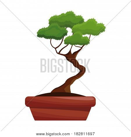 bonsai pot tree nature decoration vector illustration eps 10
