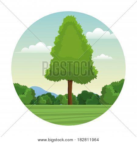 tree pine forest landscape stamp vector illustration eps 10