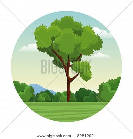tree bushes forest landscape stamp vector illustration eps 10