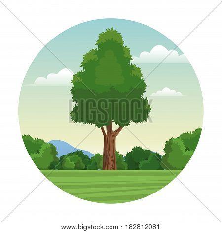 tree wood forest landscape stamp vector illustration eps 10