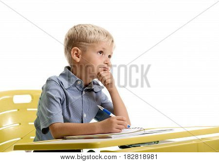 Portrait of little minded schoolboy sitting at the lesson and writing