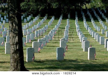 Arlington National Cemetery Headstones With American Flag On Each
