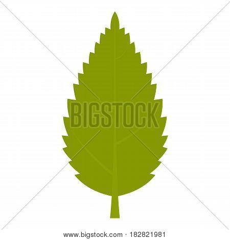 Green hornbeam leaf icon flat isolated on white background vector illustration