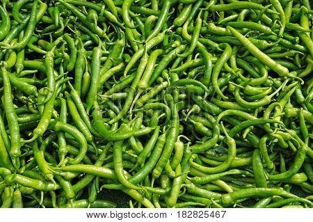 Spicy green pepper in a large number. Background of pepper. Pepper is on sale at the counter.