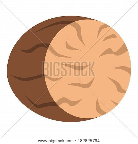 Brown half of nutmeg icon flat isolated on white background vector illustration