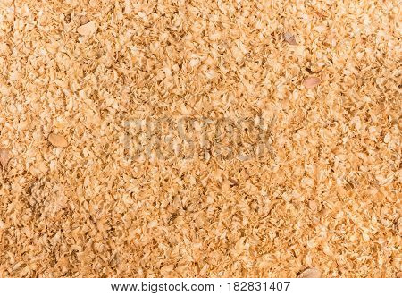 Close Up Shot Of Sawdust Texture.