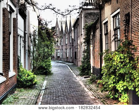 the City of Haarlem in the netherlands