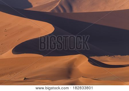 Waves of ornage dunes at Sossusvlei Namibia Africa