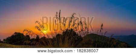 Early silent morning in Tuscany with sunrise