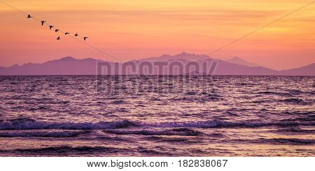 Purple sea after sunset at the beach of Follonica in Tuscany
