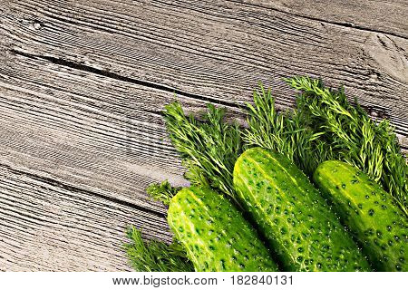 Fresh green cucumbers with dill on wooden background