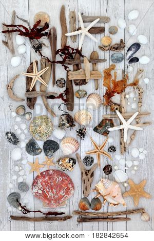 Abstract seaside beach art with driftwood, seashells, rocks, pearls and seaweed on distressed white wood background.